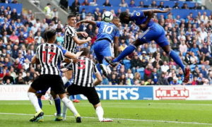 Cardiff City vs Newcastle